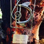 Dennis memorial tree