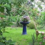 GardenatCeres2011